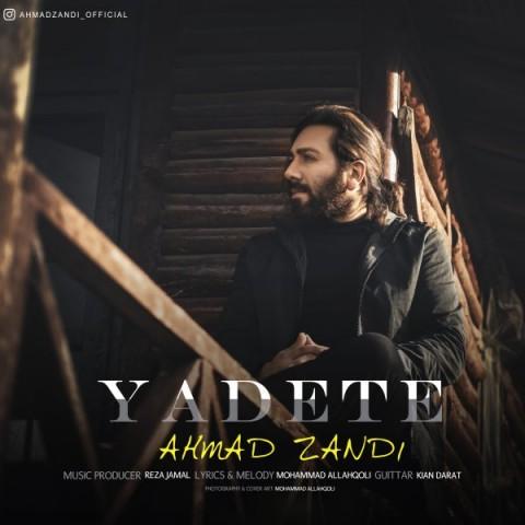 دانلود ترانه جدید احمد زندی یادته