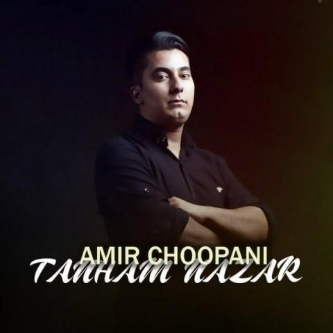 دانلود ترانه جدید امیر چوپانی تنهام  نذار