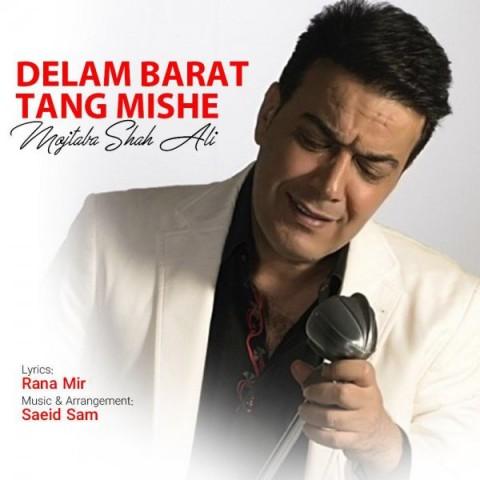 دانلود ترانه جدید مجتبی شاه علی دلم برات تنگ میشه