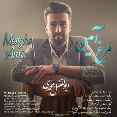 دانلود ترانه جدید ابوالفضل محمدی مرغ آمین