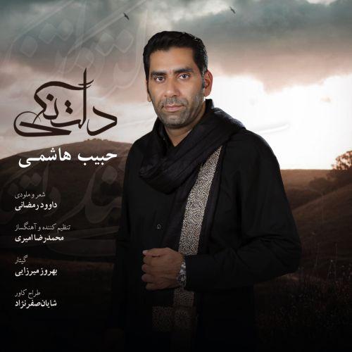 دانلود ترانه جدید حبییب هاشمی دلتنگی