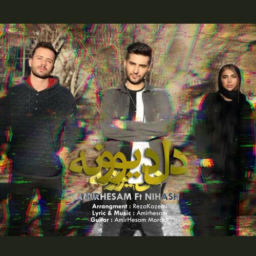 دانلود ترانه جدید امیرحسام و نیهاش دل دیونه