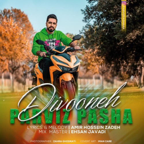 دانلود ترانه جدید پرویز پاشا دیوونه