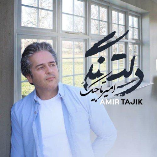دانلود ترانه جدید امیر تاجیک دلتنگی