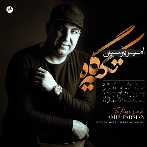 دانلود ترانه جدید امیر پارسیان تکیه گاه