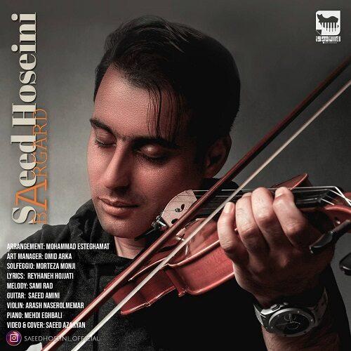 دانلود ترانه جدید سعید حسینی برگرد