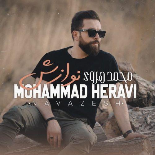 دانلود ترانه جدید محمد هروی نوازش
