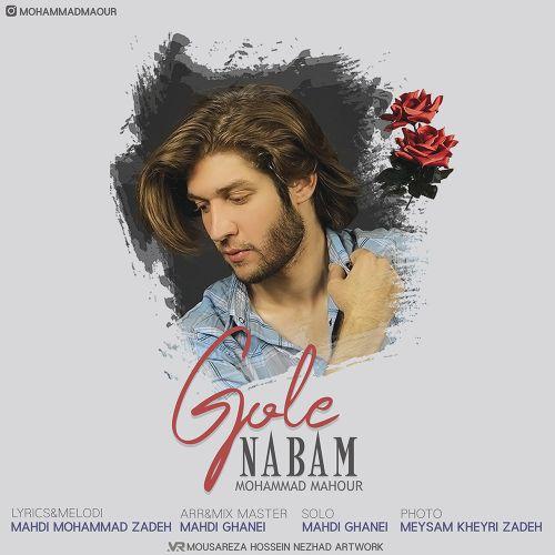 دانلود ترانه جدید محمد ماهور گل نابم