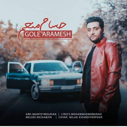 دانلود ترانه جدید حسام منعم گل آرامش